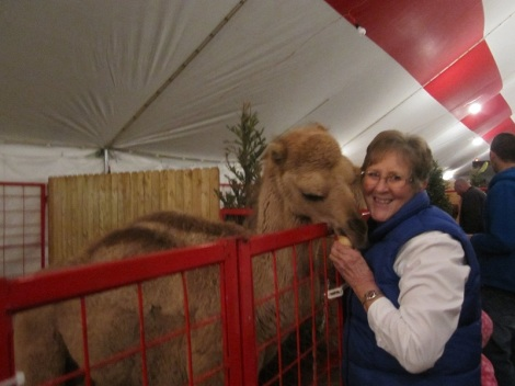 Mom getting cozy with a camel
